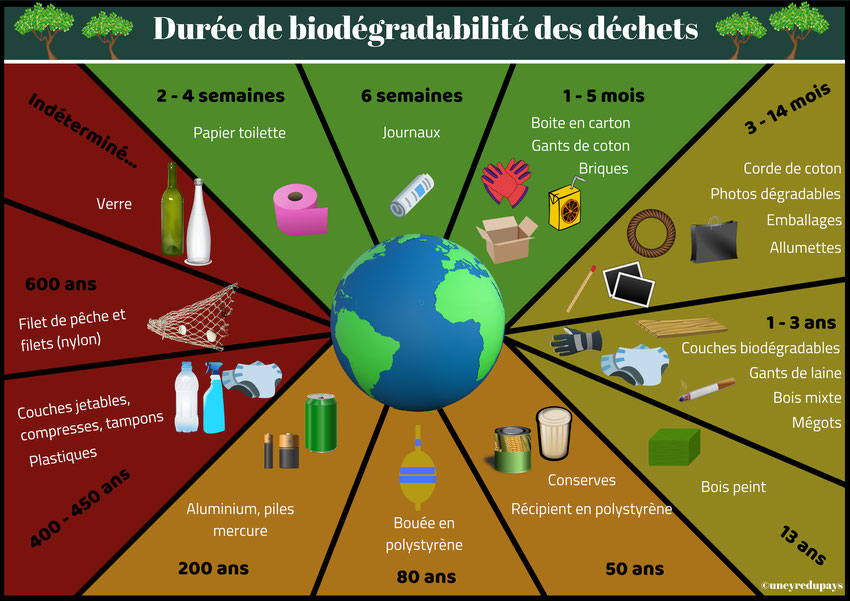 Déchets et biodégradabilité : je préserve mon bassin ! •  Actualités