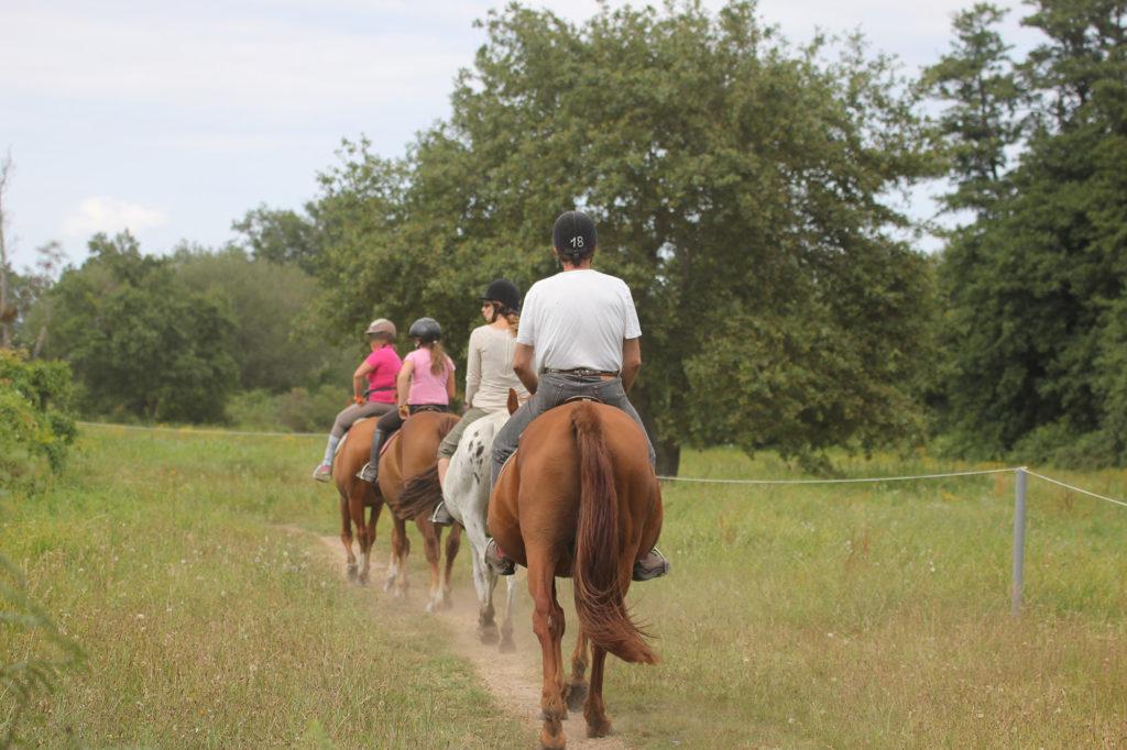 Balades à cheval - equitation villetorte loisirs