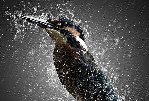 envie de bouger quand il pleut